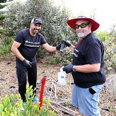 Two men who work for Newcastle Permanent planting at Stockton Beach
